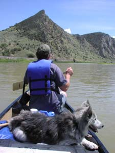 Timber dog and Thomas J. Elpel canoeing.